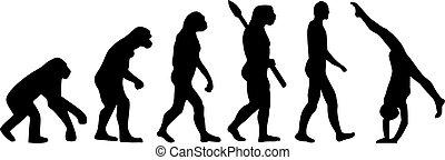 evoluzione, ginnastica, acrobatico