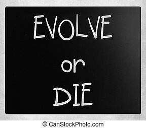 """Evolve or Die"" handwritten with white chalk on a blackboard"