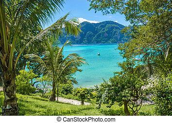 exótico, árboles, bahía, palma, barcos, tailandia