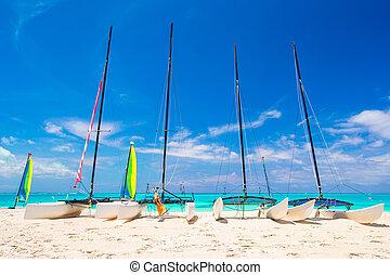 exótico, caribe, colorido, catamaranes, grupo, velas, playa