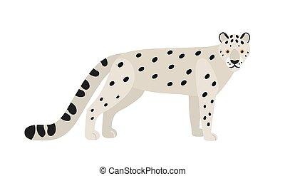 exótico, manchado, aislado, asiático, elegante, style., felid., coat., nieve, fondo., onza, animal, magnífico, blanco, plano, leopardo, ilustración, carnívoro, caricatura, coloreado, gato, grande, vector, salvaje, o
