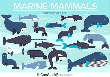 exótico, plano, vida, iconos animales, mamíferos, set., colección, océano, fondo., vector, diseño, ilustración, mar, peces marinos, criatura