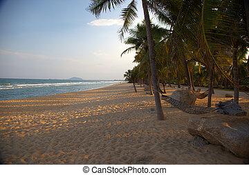 exótico, playa, con, árboles de palma, y, hamaca, en, sunset-horizontal