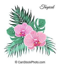 exótico, tropical, ramo, orquídea, hojas