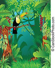 exótico, tropical, selva