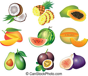 exótico, vector, conjunto, fruits
