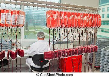 examen, de, donante, sangre, en, el, sangre, laboratorio