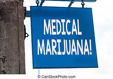 examinando, negócio, condition., marijuana., foto, mostrando, escrita, nota, recomendado, tratamento, showcasing, médico