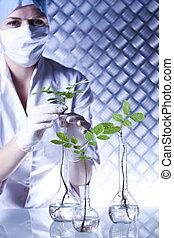 examinar, científico, plantas