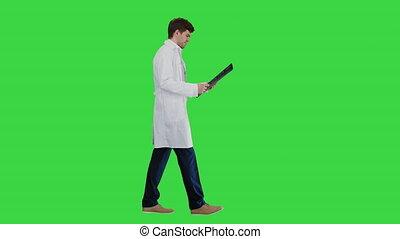 examiner, mâle, chroma, concentré, docteur, quoique, tomographie, écran, key., marche, calculé, vert