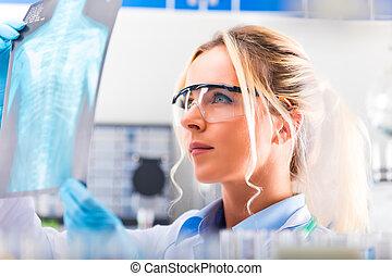 examiner, photographie, jeune, résultats, scientifique, séduisant, femme, rayon x