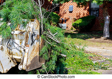 Excavator clearing land from roots and branches trees with ...