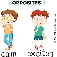 excité, calme, mots, opposé