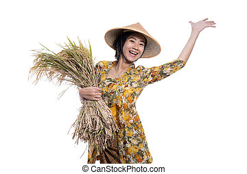 asian farmer with rice grain on hand isolated over white
