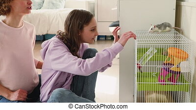 Excited teenage girl and mother playing with small rat pet