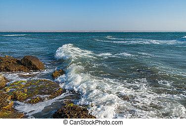 Excitement on the Black Sea.