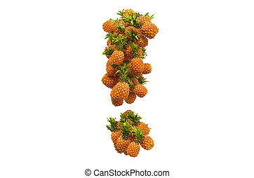 Exclamation mark from pineapples. 3D rendering