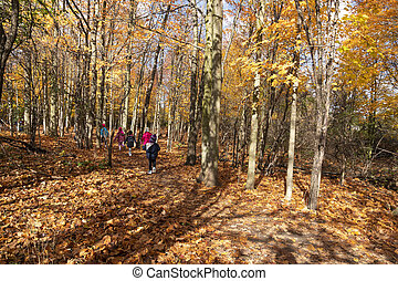 Excursion for children in the autumn forest