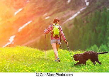 excursionismo, en las montañas, con, el suyo, perro