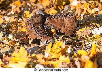 excursionismo, fangoso, botas, bien, floor., usado, bosque