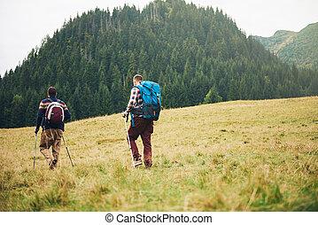 excursionistas, ambulante, en, un, campo, hacia, forested, colinas