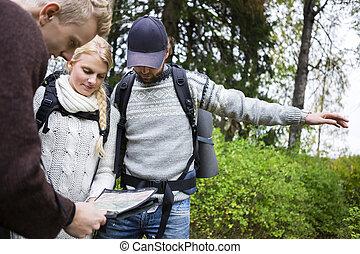 excursionistas, discutir, encima, mapa, en, bosque