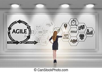 executiva, em, ágil, software, desenvolvimento, conceito