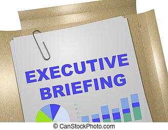 Executive Briefing concept