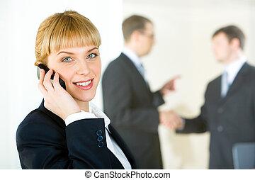 Executive consultant