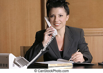 Executive - Professional woman at desk.