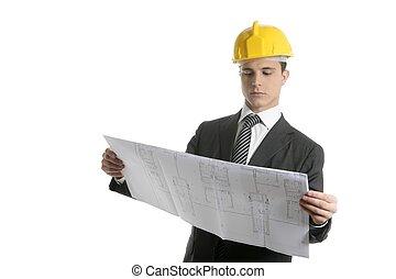 executivo, arquiteta, planos, pessoas negócio