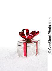 exemplář, dovolená, sněžit, dar, proložit
