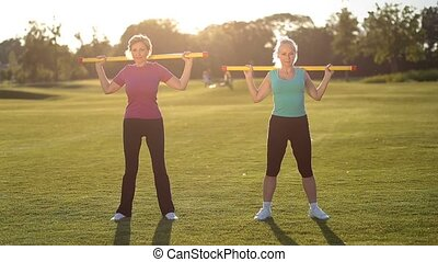 exercice, dames, sportif, fitbar, fitness