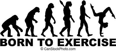 exercice, né, plancher