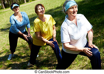 Exercise in open air - Row of aged women doing physical ...