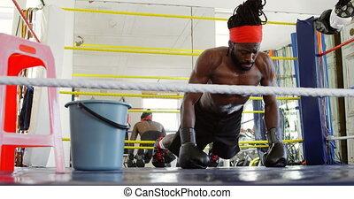 exercisme, mâle, anneau boxe, boxeur, 4k