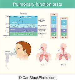 exhalar, fully., prueba, aire, respirar, función, pulmones, tests., pulmonar, volumen, durante