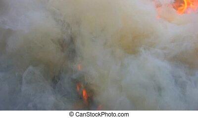 Exhaust smoke and flame