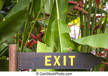 Exit sign on a wooden plate in a rainforest jungle