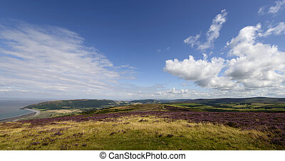 Exmoor panorama - landscape with moor vegetation, in ...