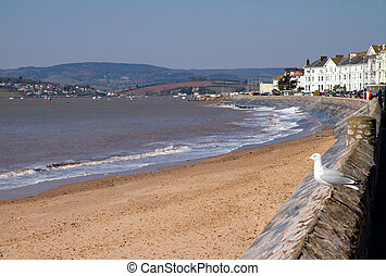 Exmouth seafront Devon - Exmouth Devon South West England a...