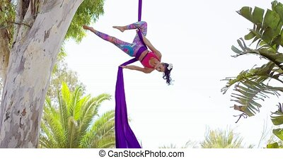 Exotic acrobatic dancer working out on silk ribbons hanging...