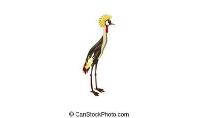 Exotic bird icon animation