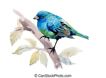 Exotic Bird on Tree Branch on White Background, Watercolor Illustration.