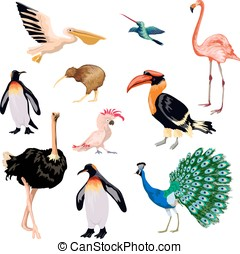 Exotic Birds Set - Exotic birds decorative icons set with...