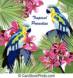 Exotic card with parrot birds and flowers