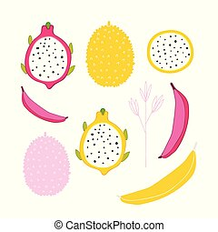 Exotic colorful tropical fruits and flower collection isolated on white background
