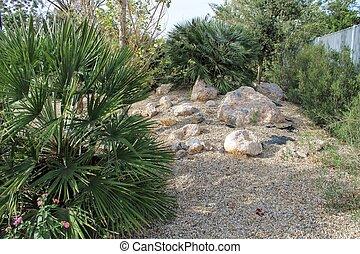 Exotic decorative plants