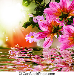 Exotic flora.Sunset  tropical background