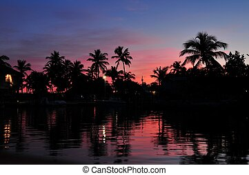 Exotic Island in Sunset. Palm Trees and Sounds of Ocean.